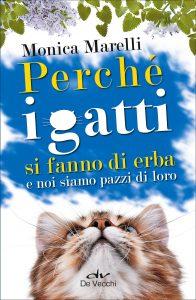 animalier-magazine-perché-i-gatti-si-fanno-di-erba-e-noi-siamo-pazzi-di-loro (2)