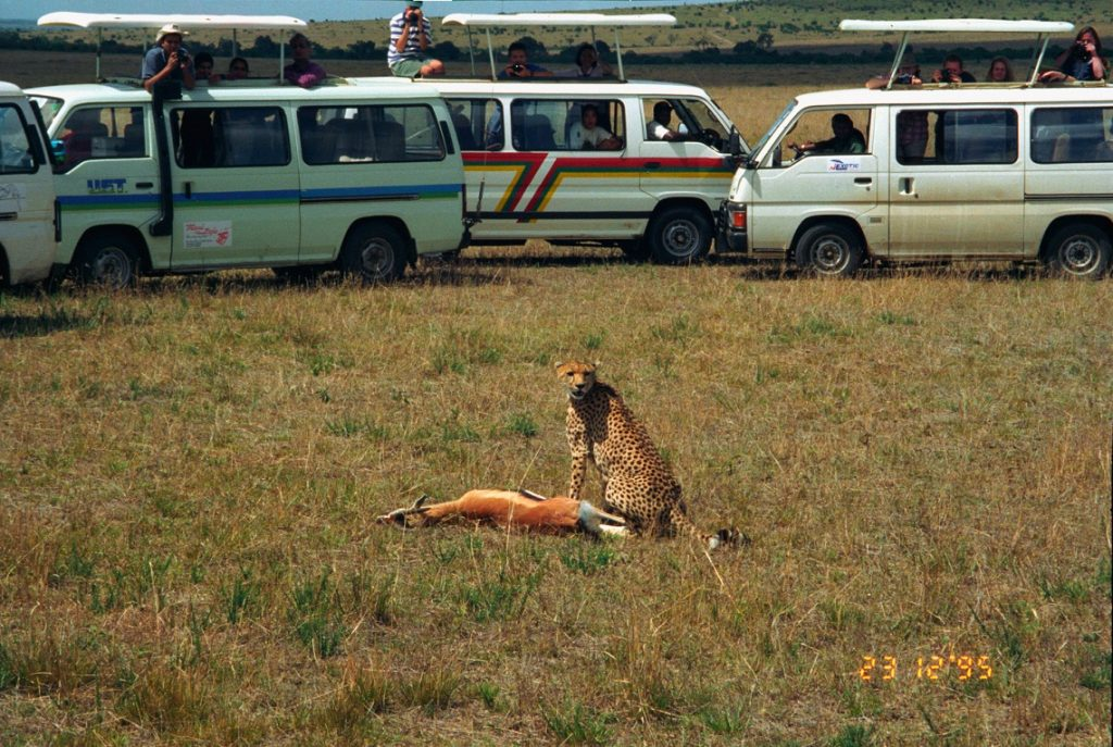 Safari in Africa © Jerzy Strzelecki