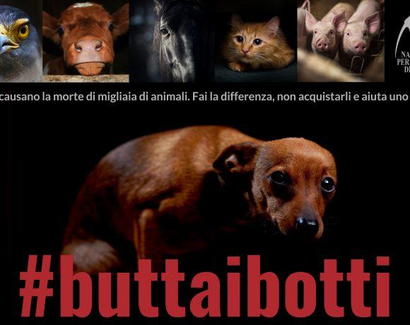 #buttaibotti-consigli-di-lega-del-cane