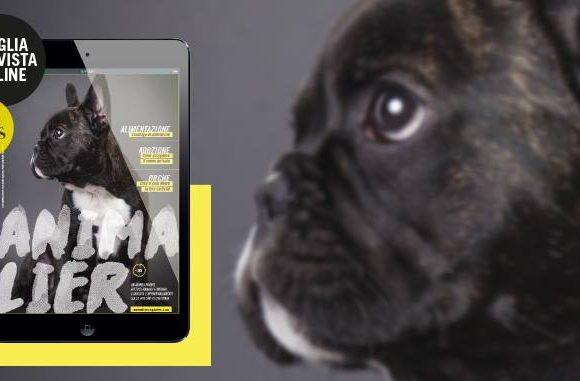 animalier-magazine-rivista-online (2)