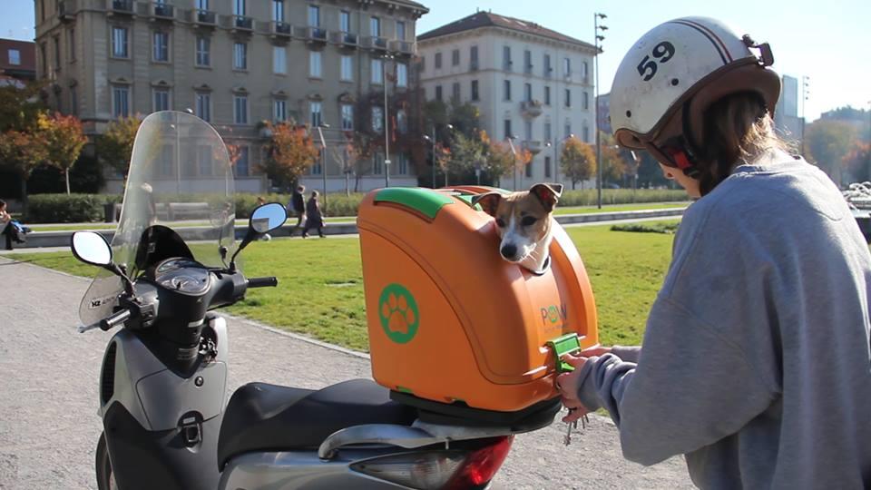 Pet on wheels fido su due ruote animalier for Trasportino cane scooter