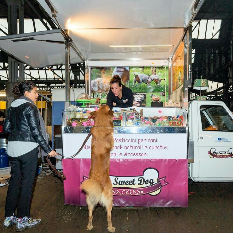 street-food-cani (3)