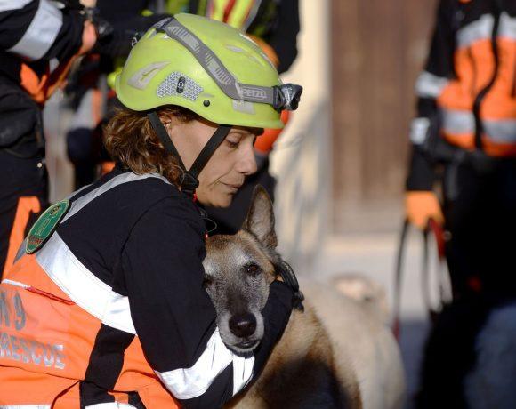 terremoto-rieti-soccorrere-animali