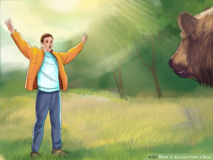 difendersi-attacco-orso